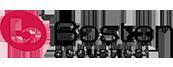BrandLogo_BostonAcoustics_original